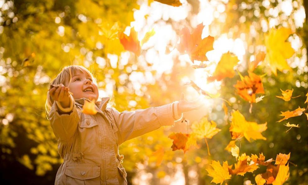 """Пакет """"Златна Есен"""""""