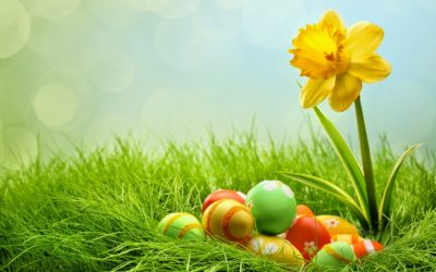 Усеща се вече милувката на пролетта!